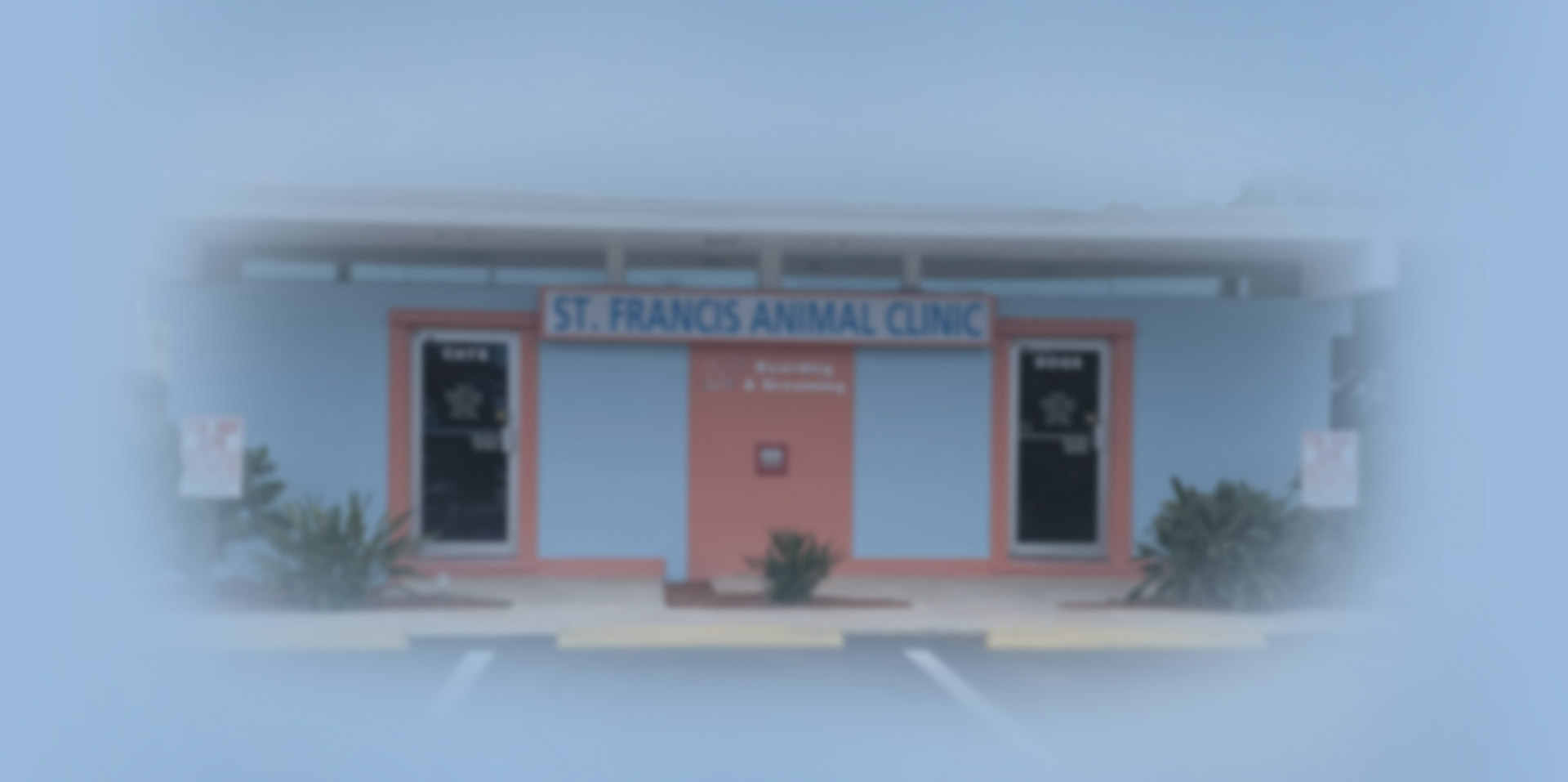 Our Clinic | St. Francis Animal Clinic